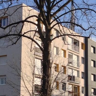 Slide Rue Melanie Strasbourg.jpg