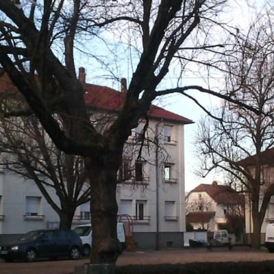 Slide Vercors Mulhouse.jpg